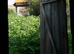 В огород