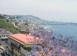 Неаполь в цвету