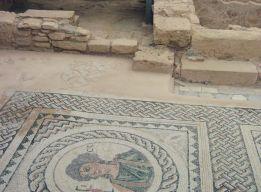 Напольные мозаики Пафоса